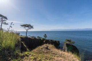 Photo 49: 2470 Lighthouse Point Rd in Sooke: Sk French Beach House for sale : MLS®# 867503