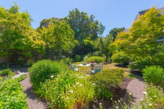 Photo 51: 20 Bushby St in : Vi Fairfield East House for sale (Victoria)  : MLS®# 879439