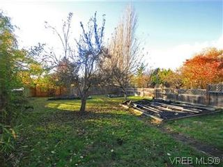 Photo 20: 322 Irving Rd in VICTORIA: Vi Fairfield East House for sale (Victoria)  : MLS®# 589580