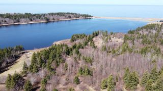 Photo 7: LOT 11-11Z Galt Pond Lane in Lower Barneys River: 108-Rural Pictou County Vacant Land for sale (Northern Region)  : MLS®# 202105372