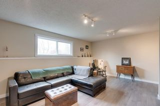 Photo 31: 1316 Idaho Street: Carstairs Detached for sale : MLS®# A1105317