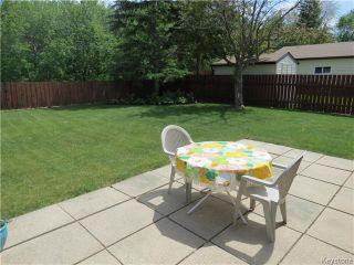 Photo 13: 95 Lismer Crescent in WINNIPEG: Charleswood Residential for sale (South Winnipeg)  : MLS®# 1414652