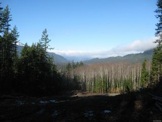 Photo 4: 1230 Cottonwood Rd in : NI Kelsey Bay/Sayward Land for sale (North Island)  : MLS®# 865463