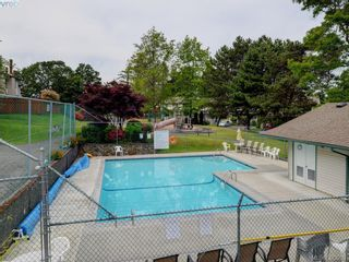 Photo 16: 301 642 Agnes St in VICTORIA: SW Glanford Row/Townhouse for sale (Saanich West)  : MLS®# 761703