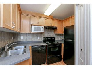 """Photo 12: 302 189 ONTARIO Place in Vancouver: Main Condo for sale in """"Mayfair"""" (Vancouver East)  : MLS®# V1132012"""