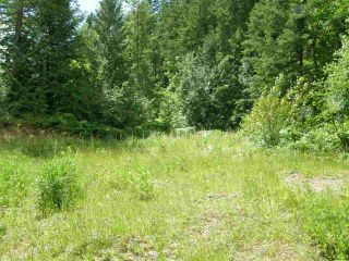 Photo 5: 23685 AMERICAN CREEK Road in Hope: Hope Center Land for sale : MLS®# R2176452