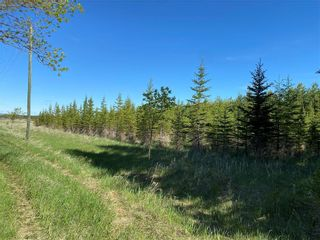 Photo 31: 46098 Whitemouth River Road East in Hadashville: R18 Residential for sale : MLS®# 202113243