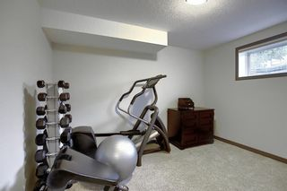 Photo 42: 44 CRANBERRY Way SE in Calgary: Cranston Detached for sale : MLS®# A1029590