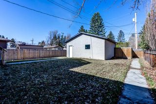 Photo 38: 9818 154 Street in Edmonton: Zone 22 House for sale : MLS®# E4241780