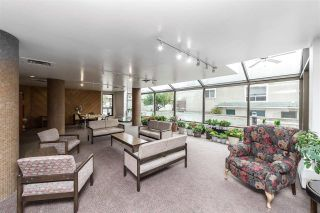 Photo 31: 203 10025 113 Street in Edmonton: Zone 12 Condo for sale : MLS®# E4225744