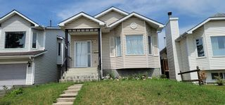 Photo 1: 766 ERINWOODS Drive in Calgary: Erin Woods Detached for sale : MLS®# A1128460