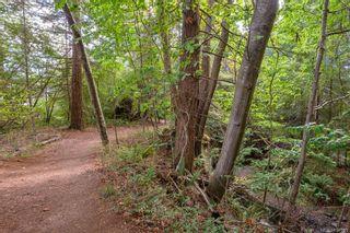 Photo 50: 315 Cortez Cres in : CV Comox (Town of) House for sale (Comox Valley)  : MLS®# 854581