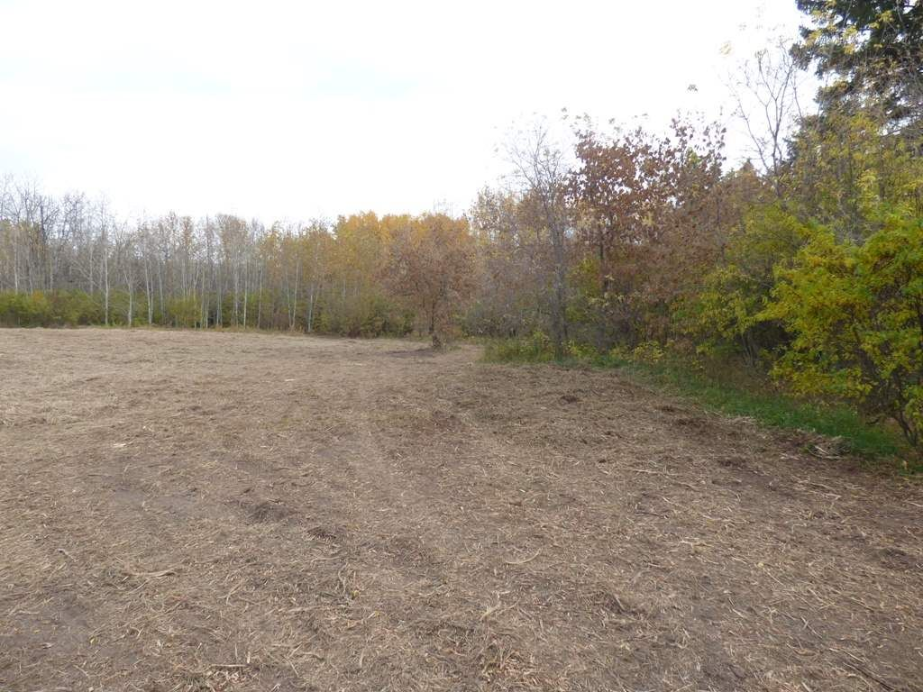 Photo 26: Photos: N1/2 SE19-57-1-W5: Rural Barrhead County Rural Land/Vacant Lot for sale : MLS®# E4217154