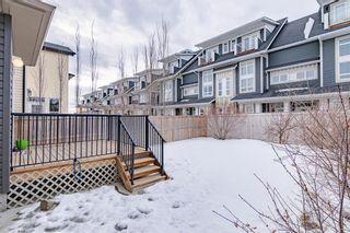 Photo 37: 336 SILVERADO PLAINS Circle SW in Calgary: Silverado Detached for sale : MLS®# A1061010