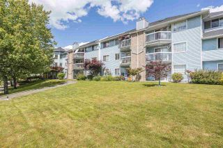 Photo 2: 302 11510 225 Street in Maple Ridge: East Central Condo for sale : MLS®# R2592848