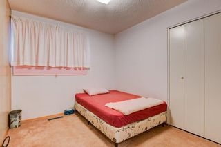 Photo 31: 5911 LOCKINVAR RD SW in Calgary: Lakeview House for sale : MLS®# C4293873