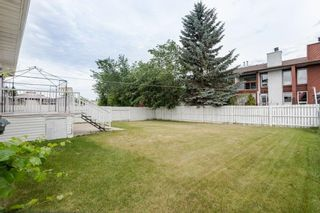 Photo 39: 42 STIRLING Road in Edmonton: Zone 27 House for sale : MLS®# E4252891