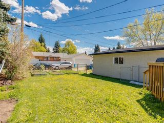 Photo 45: 5012 Bulyea Road NW in Calgary: Brentwood Detached for sale : MLS®# C4224301