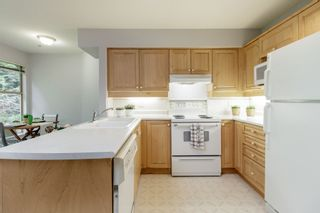 """Photo 20: 205 180 RAVINE Drive in Port Moody: Heritage Mountain Condo for sale in """"CASTLEWOODS"""" : MLS®# R2460973"""