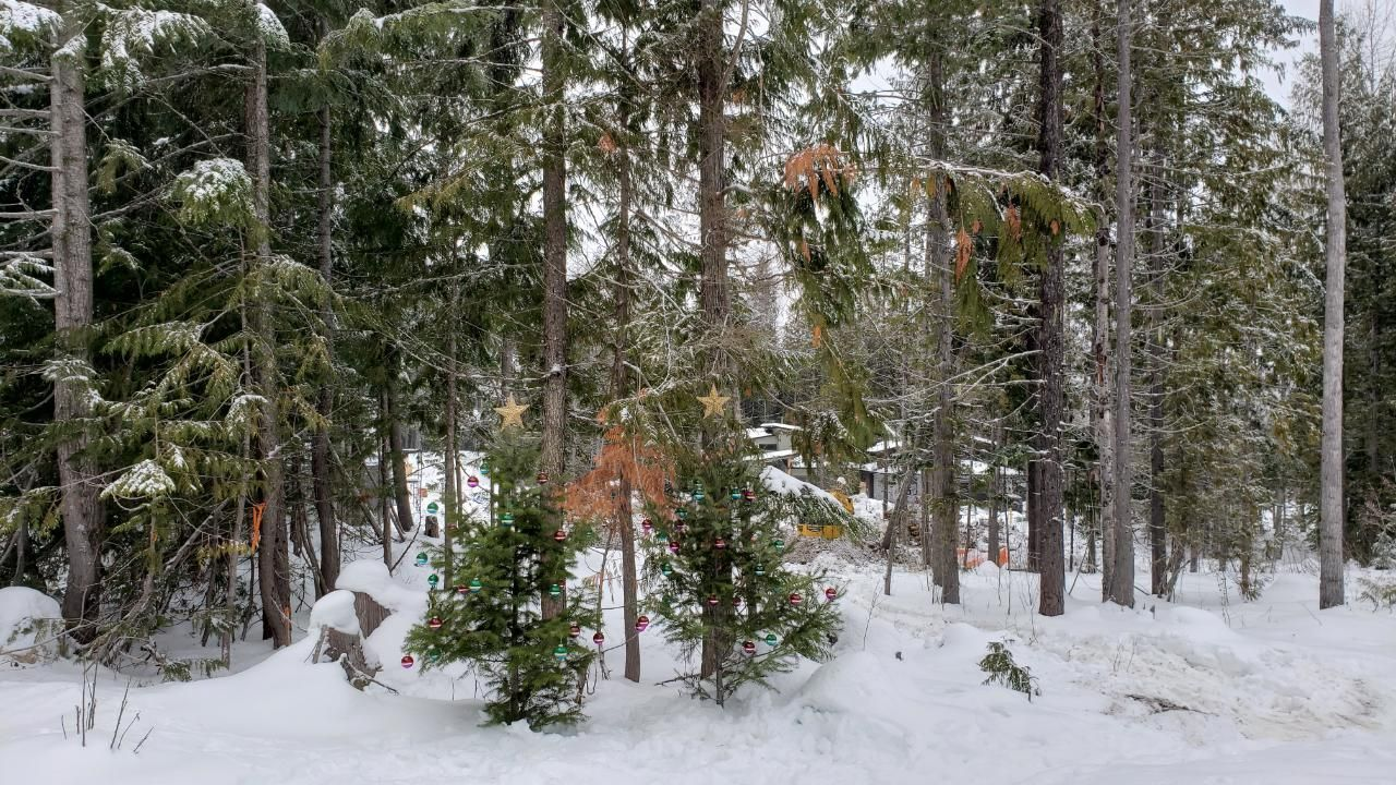 Main Photo: Lot 12 RED MOUNTAIN ROAD in Rossland: Vacant Land for sale : MLS®# 2455890