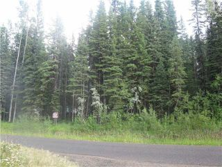 Main Photo: LOT 16 WOMACK Road in Lone Butte: Deka/Sulphurous/Hathaway Lakes Land for sale (100 Mile House (Zone 10))  : MLS®# N234619
