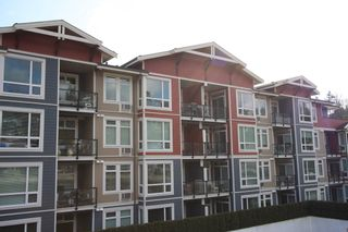 Photo 33: 306 2242 Whatcom Road in : Abbotsford East Condo for sale (Abbotsford)  : MLS®# R2544691