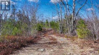 Photo 6: Acreage Grimm Road in Grimms Settlement: Vacant Land for sale : MLS®# 202108229