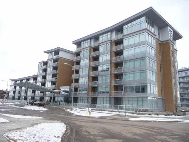 Main Photo: 315 2510 109 Street in Edmonton: Zone 16 Condo for sale : MLS®# E4255104