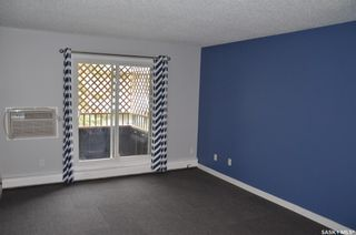 Photo 7: 203 601 X Avenue South in Saskatoon: Meadowgreen Residential for sale : MLS®# SK856281