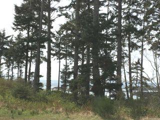 Photo 15: LT 1 Marine Dr in UCLUELET: PA Ucluelet Land for sale (Port Alberni)  : MLS®# 784343