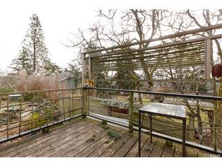 Photo 17: 991 Lavender Ave in VICTORIA: SW Marigold House for sale (Saanich West)  : MLS®# 748904