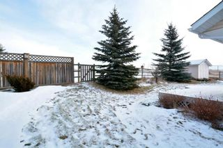 Photo 43: 106 Cremona Heights: Cremona Detached for sale : MLS®# A1125931