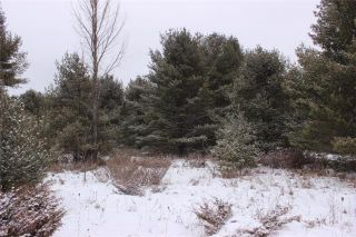 Photo 10: Lot 22 Maritime Road in Kawartha Lakes: Coboconk Property for sale : MLS®# X3413160