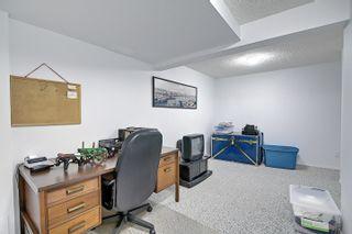 Photo 28: 55302 Rg Rd 233: Rural Sturgeon County House for sale : MLS®# E4255473