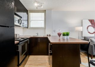 Photo 12: 103 1333 13 Avenue SW in Calgary: Beltline Apartment for sale : MLS®# A1144866