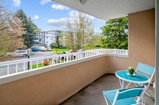 Photo 9: 205 456 Linden Ave in : Vi Fairfield West Condo for sale (Victoria)  : MLS®# 874426