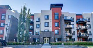 Photo 28: 243 308 AMBLESIDE Link in Edmonton: Zone 56 Condo for sale : MLS®# E4260650