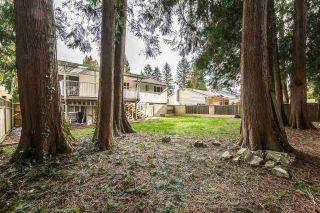 Photo 24: 3729 OAKDALE STREET in Port Coquitlam: Lincoln Park PQ House for sale : MLS®# R2545522