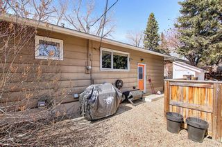 Photo 39: 800 Acadia Drive SE in Calgary: Maple Ridge Detached for sale : MLS®# A1091895