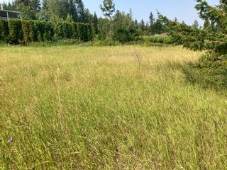 Photo 13: Lot 10 Tamerac Terrace in Sorrento: Blind Bay Land Only for sale (Shuswap)  : MLS®# 10235968