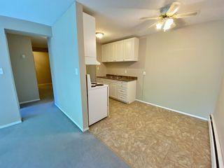 Photo 19: 305 10330 113 Street in Edmonton: Zone 12 Condo for sale : MLS®# E4250079