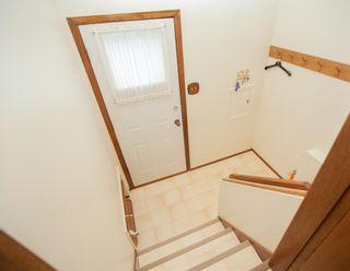 Photo 36: 4111 107A Street in Edmonton: Zone 16 House for sale : MLS®# E4249921