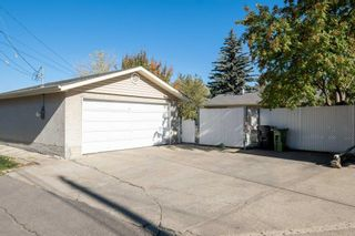 Photo 41: 279 Lynnwood Way NW in Edmonton: Zone 22 House for sale : MLS®# E4265521
