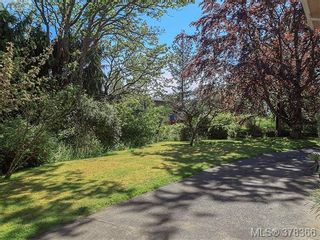 Photo 15: 3505 James Hts in VICTORIA: SE Cedar Hill House for sale (Saanich East)  : MLS®# 759789