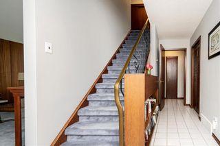 Photo 9: 317 Leila Avenue in Winnipeg: Margaret Park Residential for sale (4D)  : MLS®# 202112459