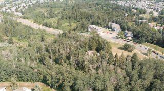 Photo 19: 40 BLACKBURN Drive W in Edmonton: Zone 55 House for sale : MLS®# E4255224