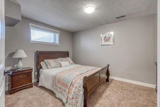 Photo 27: 10 Inverness Place SE in Calgary: McKenzie Towne Detached for sale : MLS®# A1095594