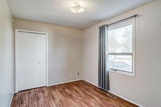 Photo 20: 20 Deerfield Circle SE in Calgary: Deer Ridge Detached for sale : MLS®# A1150049