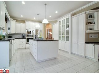Photo 4: 13302 22A Avenue in Surrey: Elgin Chantrell House for sale (South Surrey White Rock)  : MLS®# F1102396