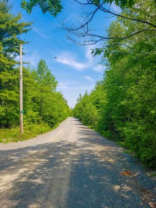 Photo 10: Lot 101 Dorey Mills Road in Clearland: 405-Lunenburg County Vacant Land for sale (South Shore)  : MLS®# 202119645